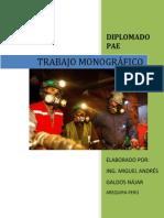 Miguel Galdos n. Trabajo Diplomado Pae Final