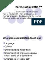 01.Socialization.ppt