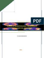DIFICULTADES DE APRENDIZAJE - Monografía