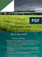 Energetska Vrijednost Biomase - I Dio (2)