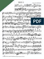 192024511 Hoffmeister Duo I Flute Viola