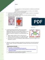 Articles-27719 Recurso Doc
