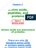 Amino Acids for Web