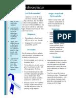 Lindsey Allen Hydrocephalus Fact Sheet