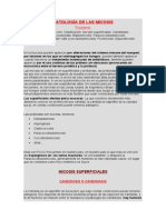 5-Patologa de Las Micosis