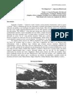 Os_Salgueiros.pdf