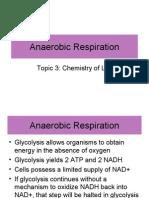 Anaerobic Resp Student Version