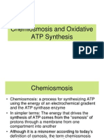 6.1 Chemiosmosis and Oxidative ATP Synthesis