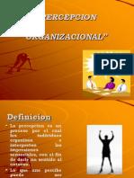 SEMANA 13 -II PARTE Percepcion y Cultura Organizacional