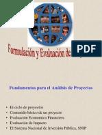 10.Formulacion y Evaluacion de Proyectos de Inversion