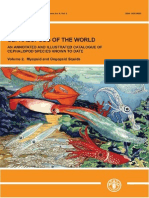 Cephalopods of the World Vol.2 Myopsid and Oegopsid Squids