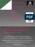 Protesis Total[1]