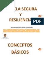Resiliencia y Escuela Segura