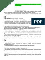 Semiotica - Proiect Analiza Situationala