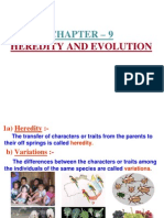 heredity and evolution ppt