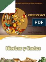 Cocina Prehispanica