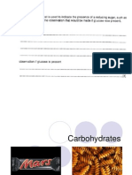carb digestion