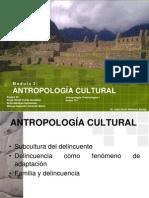 Cultural y Delinccuente
