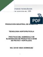 Manual de Tec._frutas_y_hortalizas Sem Ago-dic Bueno