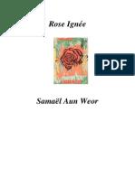 1954 La Rose Ignee
