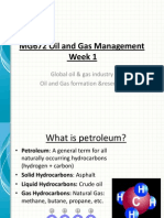 MG672 Oil and Gas Management Summary 1