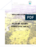 2 Plan Acci n Ambiental Local Saravena[1]