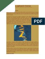 El ADN en su aplicación forense
