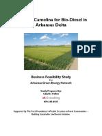 Biodiesel Feasibility1