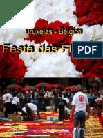 Festa Da Flor - Bruxelas