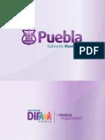 Estudio Sobre Acoso Escolar Dif Municipal Puebla