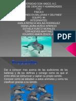 EXP_01_E04_4010_Audiciones.pptx
