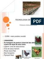 Tecnologia de Ovos Primeira Aula