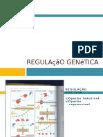 Regulação genética
