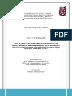 Proyecto de Intervencion VM2013 FINAL