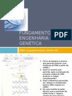 Fundamentos de engenharia Genética (Parte III)
