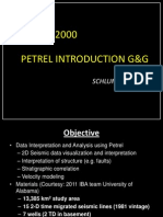 Petrel Introduction
