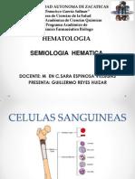 SEMIOLOGIA HEMATICA