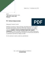 Carta de Revicion de Perfil