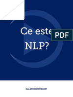 Ce este NLP