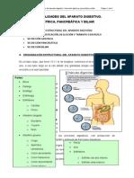 Tema i. Generalidades Del Aparato Digestivo