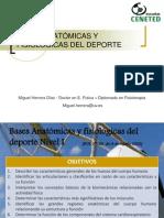 Tema 1. Presentación y Bases Anatómicas