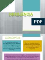 Resiliencia Expo Comunitaria