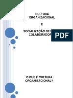 CULTURA ORGANIZACIONAL E SOCIALIZAÇÃO