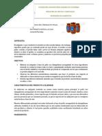 ELABORACION DEL PRODUCTO FINAL FRUVER.docx