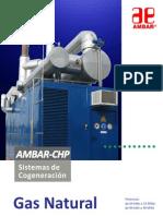 Ambar-CHP GN.pdf
