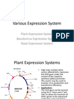Various Expression System