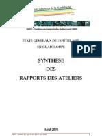 synthese_etats_generaux_guad_31_08_09