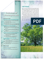 Photosynthesis Notes and lecture
