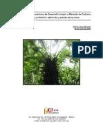 300609 - CINER Cambio Climático MDL Mercado de Carbono en Bolivia