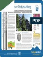 58 Granite Am Dreisesselberg
